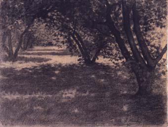 Paisatge, arbres | Sancho Piqué, Josep