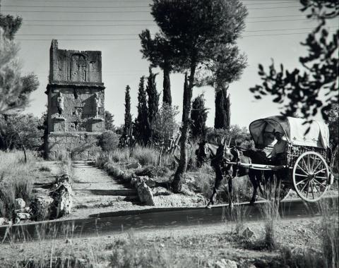 Sense títol | Català-Roca, Francesc