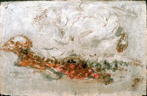 Astrònom | Saumells Panadés, Lluís M.