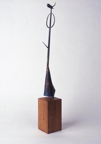 Gall | Mesa Vázquez,  Rufino