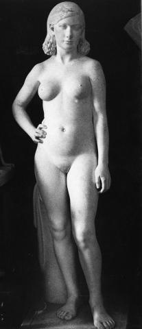 Nu de dona | Martorell Ollé, Salvador
