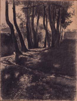 Paisatge, bosc | Sancho Piqué, Josep