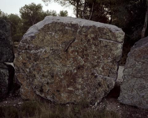Pedra 1 | Vives, Lluís