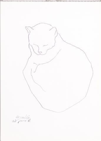 El gat d'en Paul | Rosselló ( Roselló Virgili, Josep M)