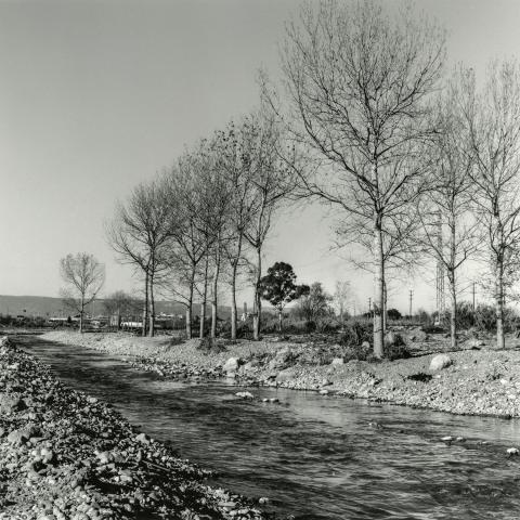 Riu Francolí | Cornadó Serra, Ramon