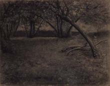 Paisaje, arbres | Sancho Piqué, Josep