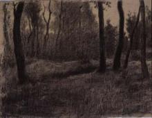 Bosc | Sancho Piqué, Josep