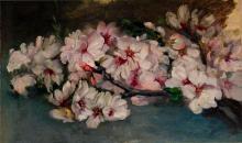 Flors d'ametller | Sancho Piqué, Josep